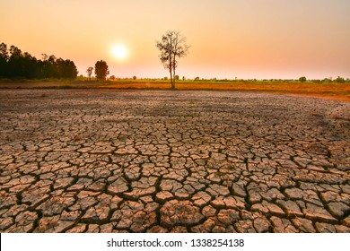 The tree leaves the gargoyle and sunshine on the dry land until the El Nino phenomenon. Green house effect Global warming caused by changes in the Earth's atmosphere