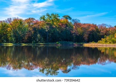Tree leaves are turning colors at Old Mill Pond in Spring Lake Heights, NJ as the seasons change.