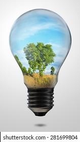 tree in light bulb design for green energy