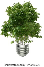 Tree in light bulb on white background with clipping path
