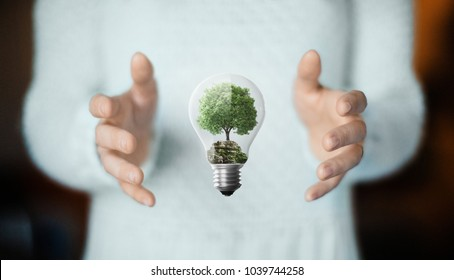 Tree in a lightbulb, concept of nature, environment