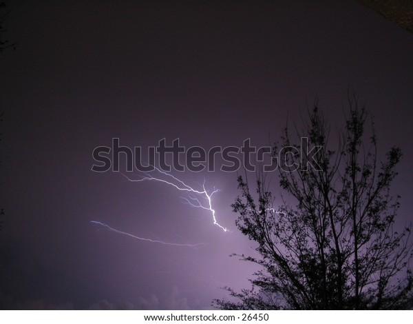 Tree with lightning