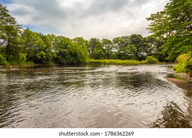 A tree lined pool on the River Dee in low water in summer at Barstibly near Kirkcudbright, Galloway Scotland