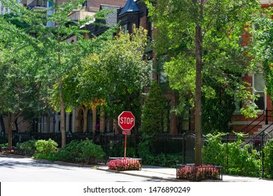 Tree lined Sidewalk with a Stop Sign in front of Old Homes in the Gold Coast Neighborhood of Chicago
