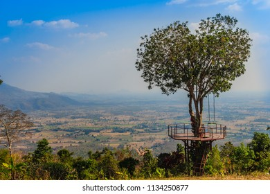 Tree of love in heart shaped with the green valley, blue sky and mountain range background. This public area is located at Ban Ruk Thai village, Noen Maprang district, Phitsanulok province, Thailand.