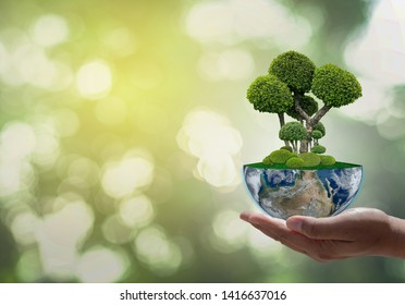 Tree on Earth. Green Planet on Hands. Save of Earth. Environment Concept for background web or World Guardian Organization.Elements of this image furnished by NASA