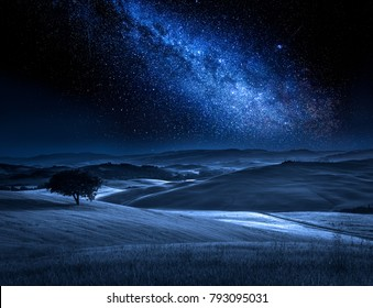 Tree on field in summer at night with milky way