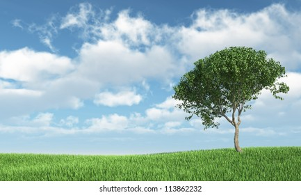 Tree on the grass - High quality render