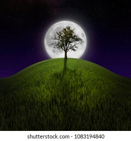 Tree on night hill lit by moon