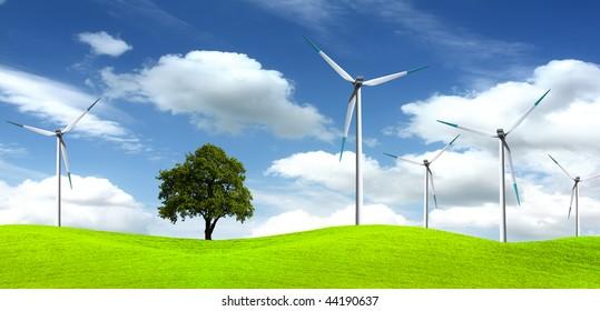 Tree on wind farm