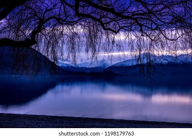 Tree overhanging calm Lake Wanaka with Mount Alta and Mount Aspiring in the distance at sunset