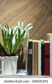 Tree pot and books on the  shelf , selective focus.