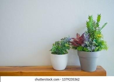 tree pot on table