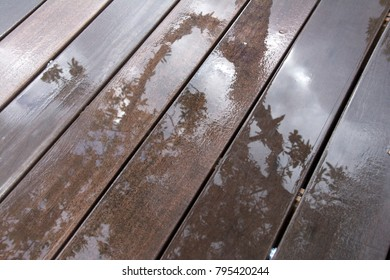 Tree reflected on a wet wooden surface