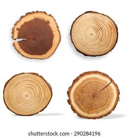 Tree Ring, Log, Wood.
