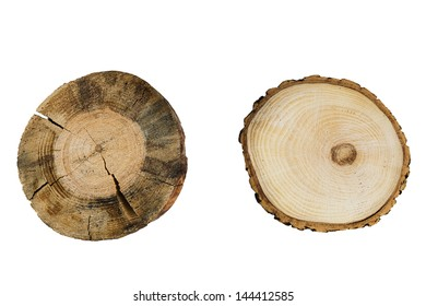 tree rings close up isolated on white background