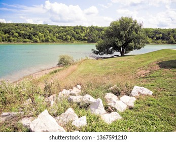 Tree and Rocks Beside Lake on a Summer Day