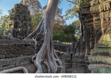Tree roots covering ruins of Khmer ancient Ta Prohm temple outside of Angkor Wat, Siem Reap, Cambodia