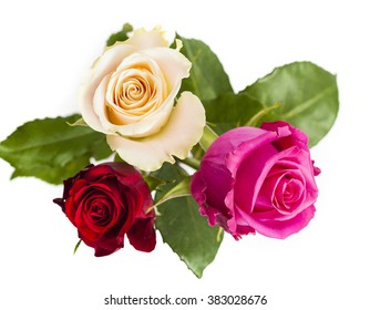 Tree roses, yellow, red and pink, isolated, on white background. View from above.