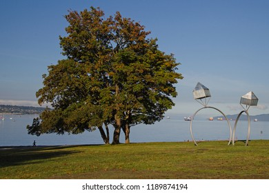 Tree  and sculpture on the waterfront in Vancouver, BC