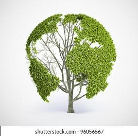 Tree shaped like the World map
