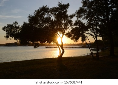 Tree Silhouette on water background  at sunset -Clarence River Australia
