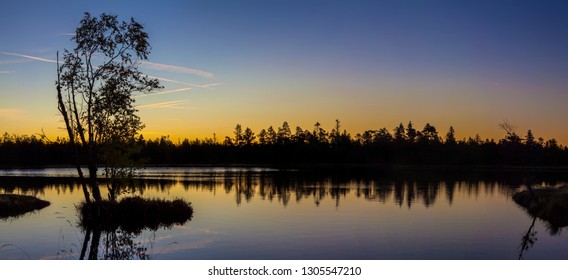 Tree silhouettes at a small lake in a forest at sunrise