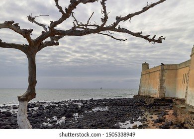 A Tree sits in the foreground of Ana Chaves Bay, and the Corner Walls of the Sao Sebastiao fort in Sao Tome Island, West Africa.