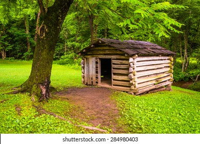Tree and small log cabin at Cade's Cove, Great Smoky Mountains National Park, Tennessee.