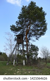 tree stand, hunting blind in the field near forest