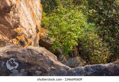 Tree and Stone or Rock Hill at Pha Hua Rue Cliff Phayao Attractions Thailand. Natural rock or stone cliff at Pha Hua Rue Phayao northern Thailand travel