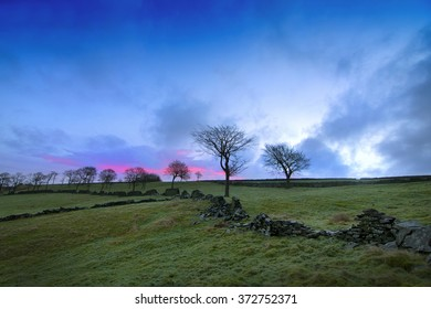 Tree at sunrise with dry stone wall. Taken at Cragg Vale, Calderdale, UK.