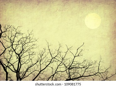 tree and sunset with old grunge antique paper texture