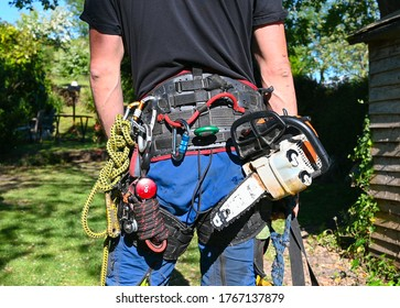 A Tree Surgeon or Arborist wearing his safety harness carrying a chainsaw and safety ropes