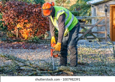 Tree surgeon using a chainsaw to cut branches on the ground.  Flying wood chippings