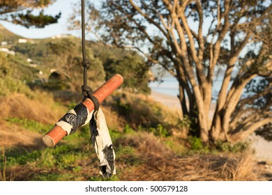 Tree Swing/ a tree swing at a beach in NZ