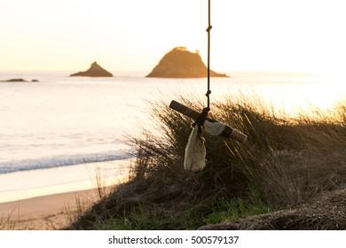 Tree Swing/ a tree swing at a beach in NZ