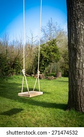 Tree swing in the garden with a tall tree, blue sky and green grass
