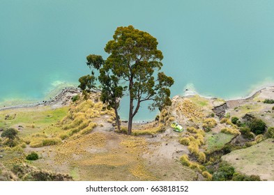 Tree and tent on the bank ob Quilotoa lake, Ecuador