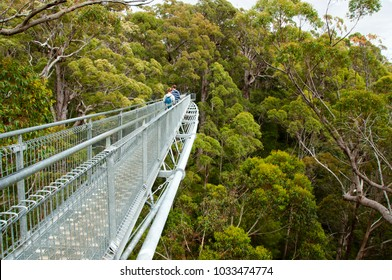 Tree Top Walk - Walpole - Australia