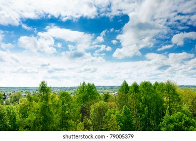 Tree tops of  mixed forest under the cloudy, blue sky