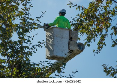 Tree trimmer in bucket holding a chainsaw amidst the branches