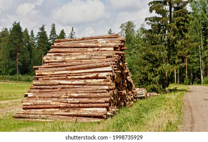 Tree trunks collected in a stack for transporting