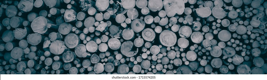 tree trunks from front view stacked on top of each other, interesting background, the best photo - Shutterstock ID 1715574205