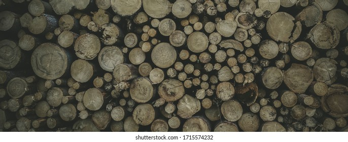 tree trunks from front view stacked on top of each other, interesting background, the best photo - Shutterstock ID 1715574232