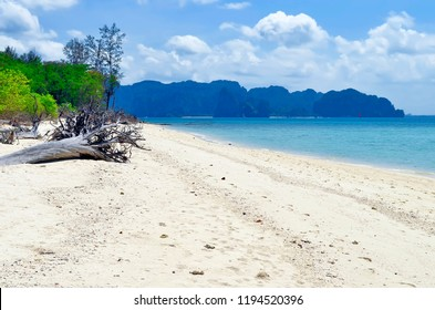 Tree trunks on the beach of Koh Poda with Railay Beach and Phra Nang Beach in the background, in the Ao Nang bay, Krabi province, Thailand