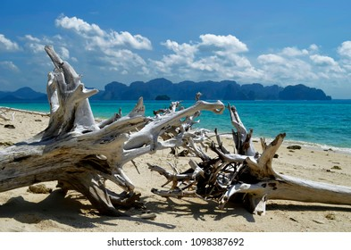 Tree trunks on the white sand beach of Koh Poda, with the Ao Nang coastline and the Railay peninsula in the background, Thailand.