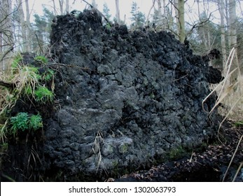 Tree uprooted with dirt and peat.