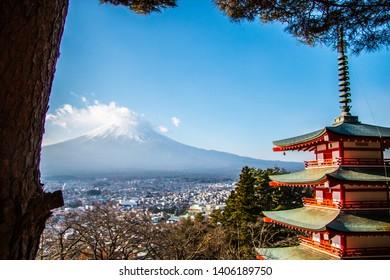 Tree view towards Mt. Fuji in Japan