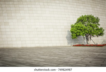 Tree with Wall